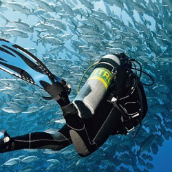 reserve cousteau bateau a fond de verre